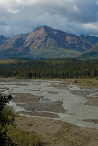 Teklanika River in Denali National Park, about 15 miles from McCandless's bus.